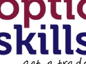 Options Skills