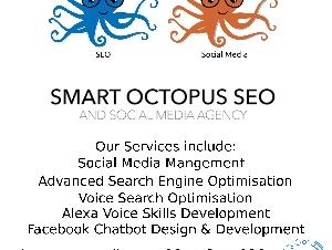 Smart Octopus SEO